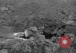 Image of 32nd Infantry 7th Division Okinawa Ryukyu Islands, 1945, second 43 stock footage video 65675052972