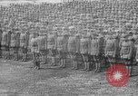 Image of 339th Infantry of American Expedition Forces Archangel Russia, 1919, second 39 stock footage video 65675053047