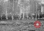 Image of American 339th Infantry Regiment Archangel Russia, 1918, second 13 stock footage video 65675053049