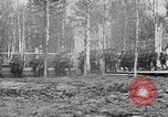 Image of American 339th Infantry Regiment Archangel Russia, 1918, second 16 stock footage video 65675053049