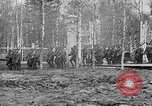 Image of American 339th Infantry Regiment Archangel Russia, 1918, second 17 stock footage video 65675053049
