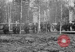 Image of American 339th Infantry Regiment Archangel Russia, 1918, second 18 stock footage video 65675053049