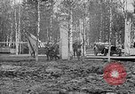 Image of American 339th Infantry Regiment Archangel Russia, 1918, second 39 stock footage video 65675053049