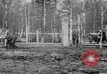 Image of American 339th Infantry Regiment Archangel Russia, 1918, second 42 stock footage video 65675053049