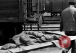 Image of war casualties Eastern Front European Theater, 1916, second 21 stock footage video 65675053079