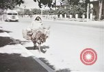 Image of Animal economy Morocco North Africa, 1944, second 20 stock footage video 65675053172