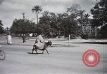 Image of Animal economy Morocco North Africa, 1944, second 52 stock footage video 65675053172