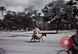 Image of Animal economy Morocco North Africa, 1944, second 54 stock footage video 65675053172