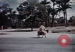 Image of Animal economy Morocco North Africa, 1944, second 56 stock footage video 65675053172