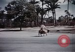 Image of Animal economy Morocco North Africa, 1944, second 57 stock footage video 65675053172