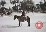 Image of Animal economy Morocco North Africa, 1944, second 58 stock footage video 65675053172