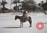 Image of Animal economy Morocco North Africa, 1944, second 59 stock footage video 65675053172