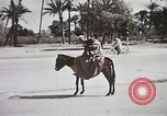 Image of Animal economy Morocco North Africa, 1944, second 60 stock footage video 65675053172