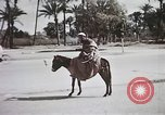 Image of Animal economy Morocco North Africa, 1944, second 62 stock footage video 65675053172