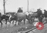 Image of Red Cross camps Turkey, 1920, second 54 stock footage video 65675053219