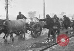 Image of Red Cross camps Turkey, 1920, second 55 stock footage video 65675053219