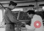 Image of United States soldiers Copenhagen Denmark, 1945, second 59 stock footage video 65675053346