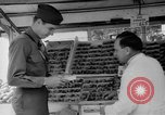 Image of United States soldiers Copenhagen Denmark, 1945, second 60 stock footage video 65675053346