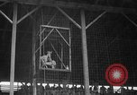 Image of Rodeo competition Huntsville Texas USA, 1945, second 16 stock footage video 65675053380