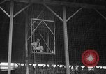 Image of Rodeo competition Huntsville Texas USA, 1945, second 18 stock footage video 65675053380