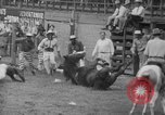 Image of Rodeo competition Huntsville Texas USA, 1945, second 43 stock footage video 65675053380