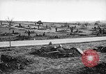 Image of United States Army Germany, 1945, second 20 stock footage video 65675053381