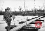 Image of United States Army Germany, 1945, second 40 stock footage video 65675053381