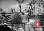 Image of United States Army Germany, 1945, second 54 stock footage video 65675053381