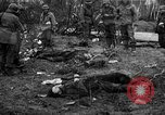 Image of United States Army Germany, 1945, second 60 stock footage video 65675053381