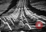 Image of Adolf Hitler Germany, 1941, second 28 stock footage video 65675053388