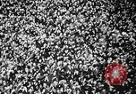 Image of Adolf Hitler Germany, 1941, second 56 stock footage video 65675053388