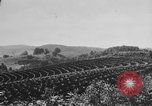 Image of American society United States USA, 1945, second 30 stock footage video 65675053398