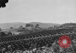 Image of American society United States USA, 1945, second 31 stock footage video 65675053398