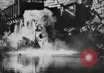 Image of American society United States USA, 1945, second 35 stock footage video 65675053398