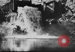 Image of American society United States USA, 1945, second 36 stock footage video 65675053398
