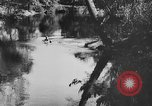 Image of American society United States USA, 1945, second 45 stock footage video 65675053398