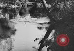 Image of American society United States USA, 1945, second 46 stock footage video 65675053398