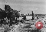 Image of German soldiers demobilized after surrender Germany, 1945, second 54 stock footage video 65675053400