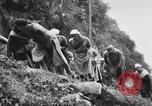 Image of Chinese Laborers China, 1945, second 38 stock footage video 65675053404