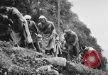 Image of Chinese Laborers China, 1945, second 41 stock footage video 65675053404