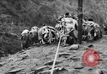 Image of Chinese Laborers China, 1945, second 43 stock footage video 65675053404