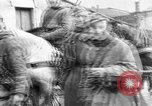 Image of German troops Russian Front, 1941, second 19 stock footage video 65675053417