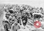 Image of German troops Russian Front, 1941, second 32 stock footage video 65675053417