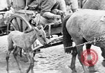 Image of German troops Russian Front, 1941, second 33 stock footage video 65675053417