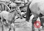 Image of German troops Russian Front, 1941, second 34 stock footage video 65675053417