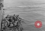 Image of United States soldiers Bougainville Island Papua New Guinea, 1944, second 27 stock footage video 65675053429