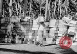 Image of Troops load supplies on Higgins Boats Solomon Islands, 1944, second 41 stock footage video 65675053483
