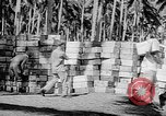 Image of Troops load supplies on Higgins Boats Solomon Islands, 1944, second 43 stock footage video 65675053483