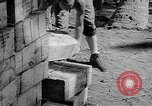 Image of Troops load supplies on Higgins Boats Solomon Islands, 1944, second 44 stock footage video 65675053483