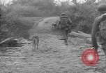 Image of United States troops Burma, 1944, second 30 stock footage video 65675053490